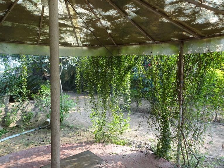Yoga Retreat at Shahzadpur