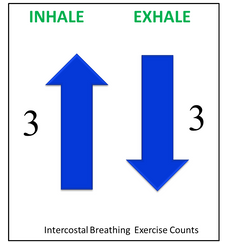 Intercostal Breathing Exercise's Count