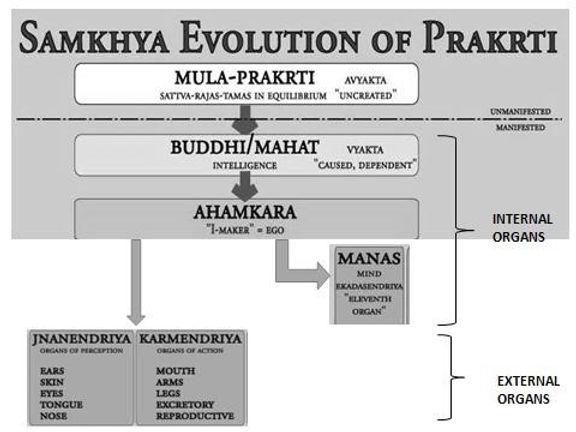 Samkhya Karika 29
