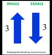 breathing exercise intercoastal clavicular diaphragm