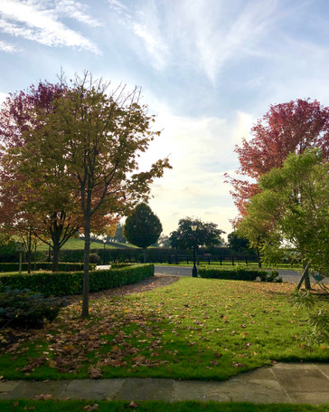 Autumn at Stainers Farm