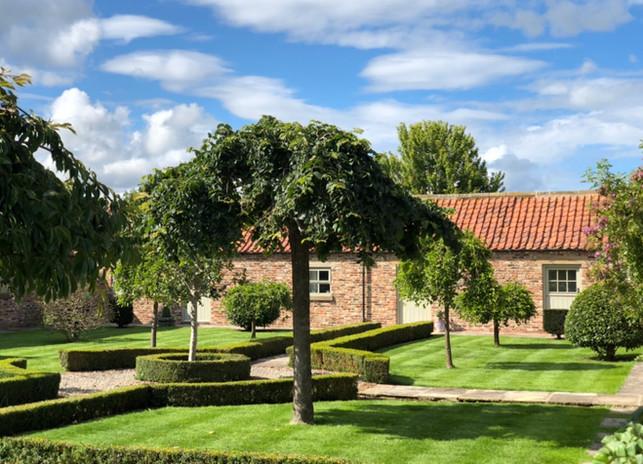 Cottage courtyard in summer