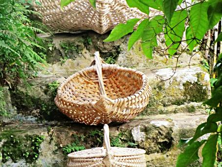 Our Saba Basket Adventure