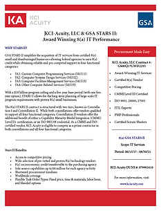 Link to KCI-Acuity PDF of 8(a) IT Performance