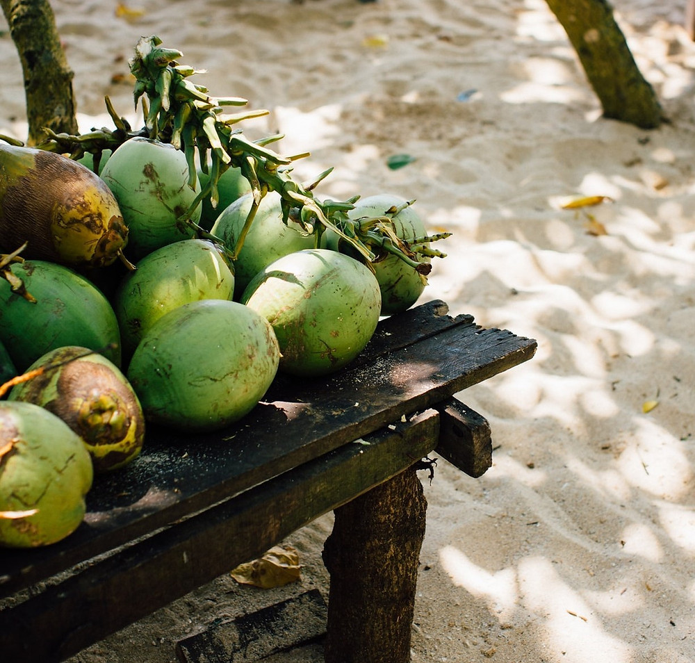 Palm Tree Fruit ( Coconut)