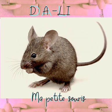 Graphiste Pochette Single DA-LI Ma petite souris