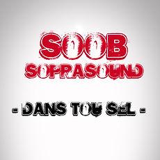 Soob feat soprasound - dans tou sel - musique Réunion 974