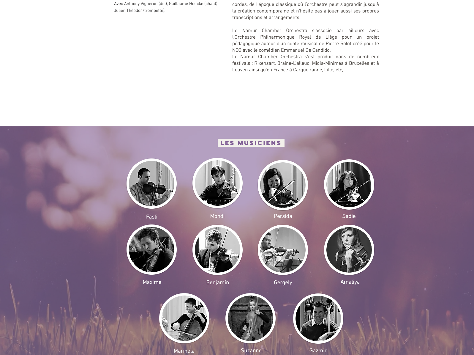 Screen_SiteWeb_Namur_chamber_Orchestra_N