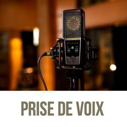 Enregistrement voix professionnelles