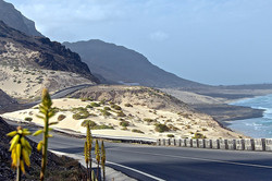 Estrada Baía das Gatas
