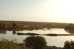 Niger Safari