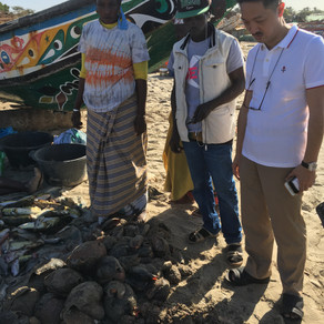 AMBASSADOR - AT - LARGE OF GAMBIA IN SOUTH EAST ASIA and Team Visit Fish Market in Gambia