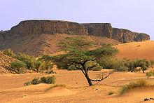 Mountains in the Adrar region
