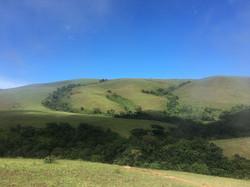 1280px-Rainforest_range_of_Obudu_Mountai