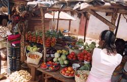 Dinguiraye Prefecture, Guinea