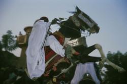 Horsemen at the traditional Ramadan