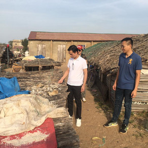 Special Envoy on Ocean Resources, Dr. Zhang-An Shun JP and his Team Visit to Fish Market in Gambia