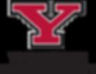 1452692961-Y_logo.png