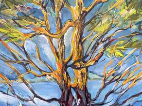 """Oh, a Tom Thomson Tree!"""