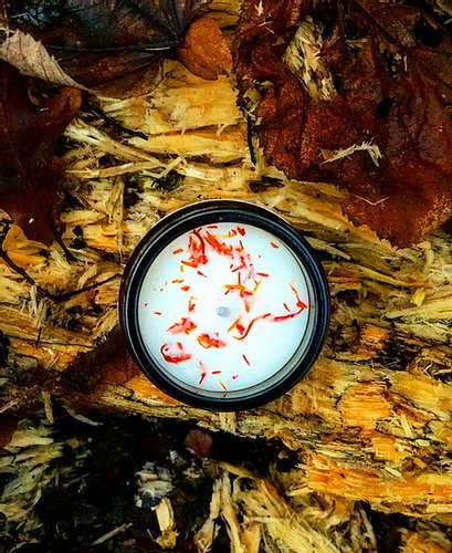 Run WithWolves Organic Soy Candle - Orange Embers