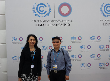 Prof. Maria Madi: Analysis of COP20