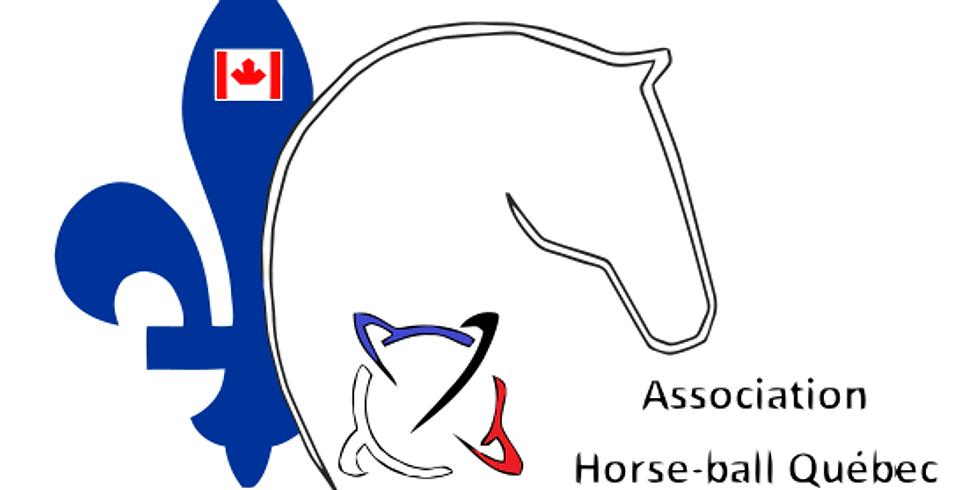 2 ème Compétition Horse-Ball Québec