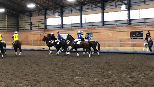 Démonstration de Horseball à Équimania - Bécancour