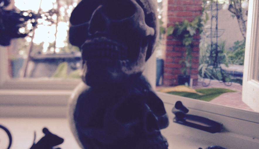 Skulls & Rats