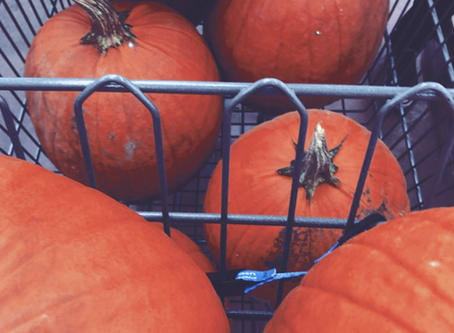 The Great Pumpkin Project - and How to Participate