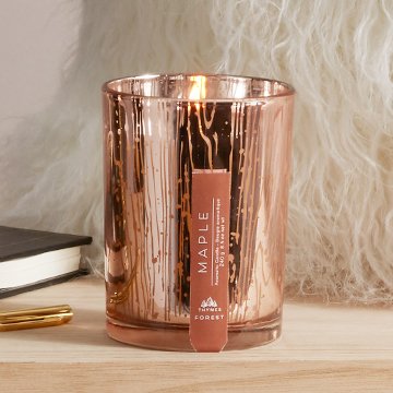 Forest, Maple - Thymes®