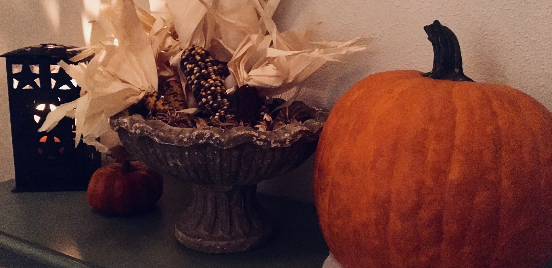 Pumpkin & Ruff
