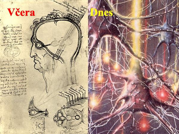 Obrázky mozek moje.003.jpeg