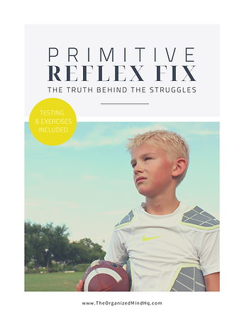 Prim Reflex Fix eCourse Workbook Templat