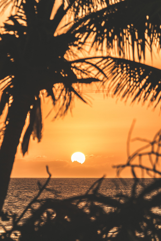 insta post sunset.jpg