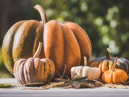 Forget Halloween…It's Pumpkin Season!
