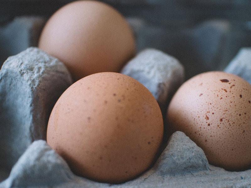 Why should I eat eggs?