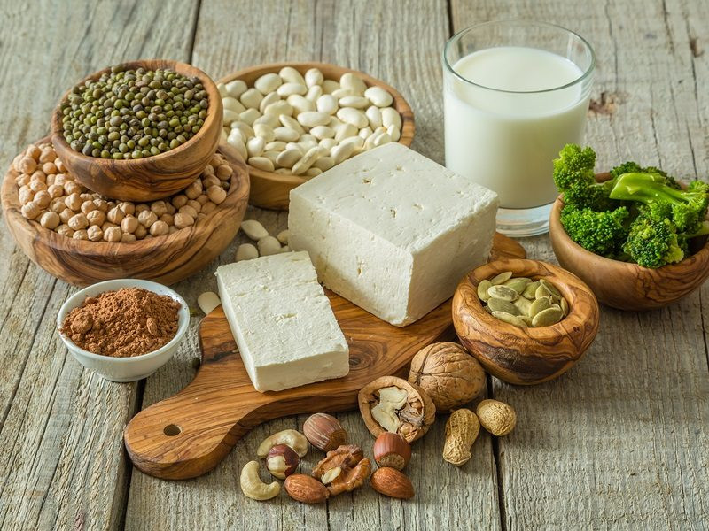 Non-meat sources of protein