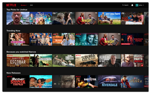 visual hierarchy with netflix