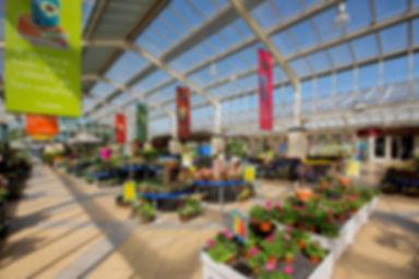 plant id, smartplant retailer, plant retailer, plant barcode, plant id, plant store, plant sales, plant app