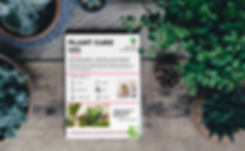 plant care 101, planting guides, garden care, garden guide, pink plants, plant love, valentines day plants