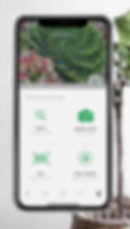 planting app, plant technology, plant help, pest on plant, planting, garden app, plant technology