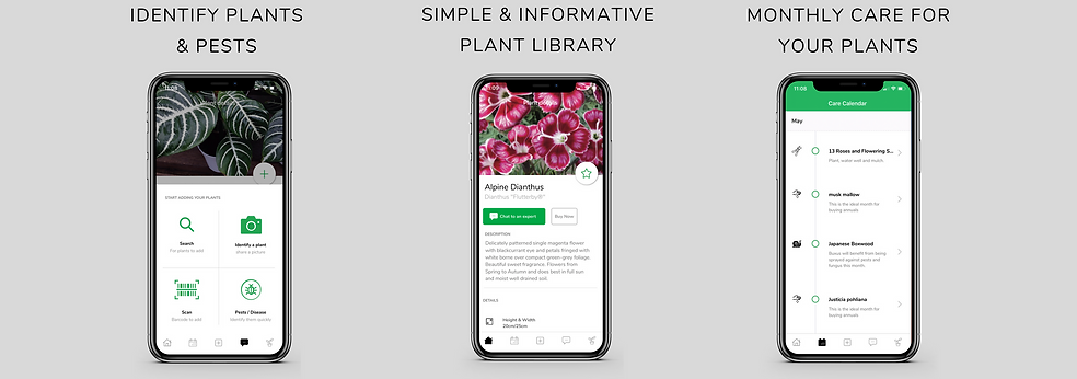 plant library, identify plants, identify pests, simple plants, plant care, plant calender, garden calender, smartplant