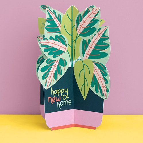 3D fold-out 'Happy New Home' Plant Card