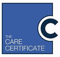 FULL Care Certificate Standard Induction