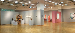Exhibition & Curation