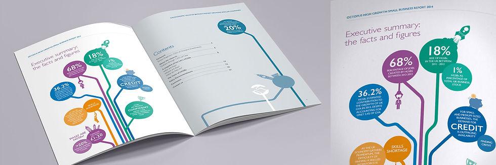 octopus hgsb inside brochure row_2x.jpg