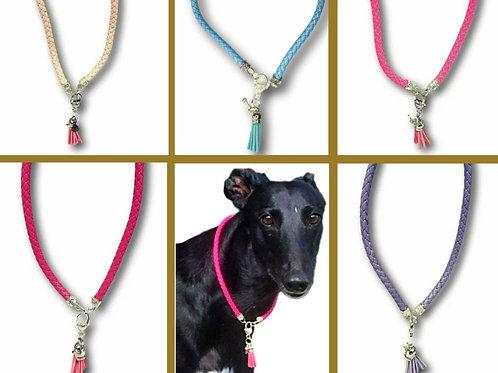 House Collars-Whippet-Red Hot Pet (Click for Design Range)