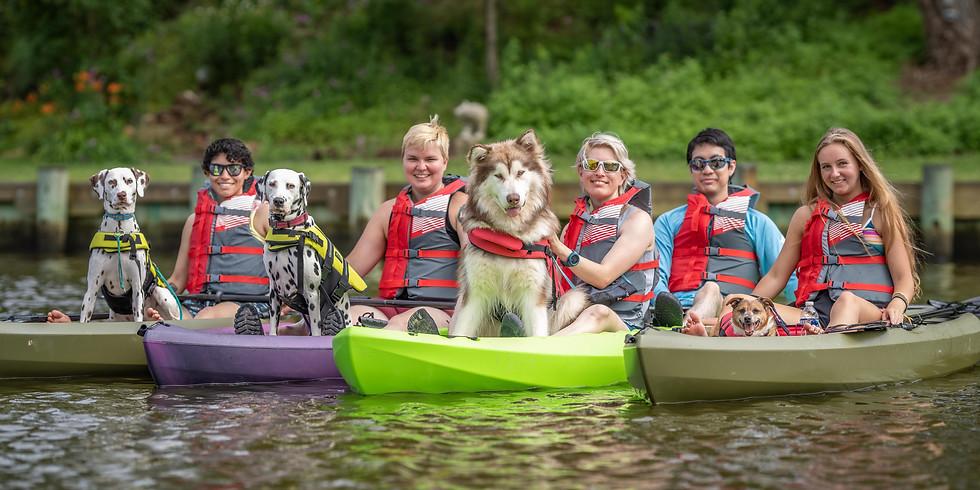 Paddle Photo Shoot with Pro PetShots