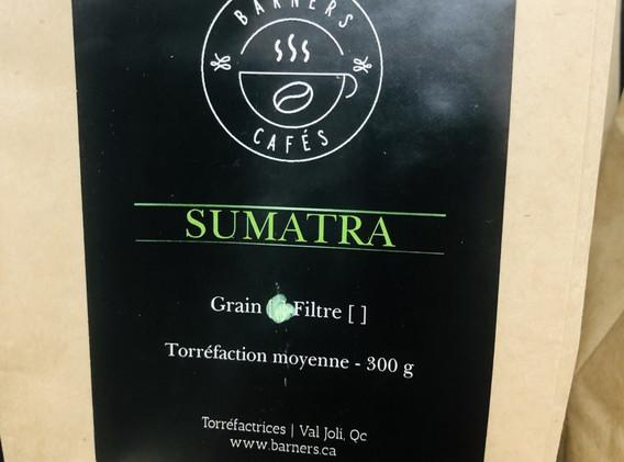 Barners - Sumatra.jpg