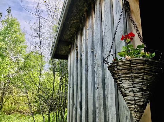 Cabane jardin.jpg